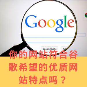 google standard web